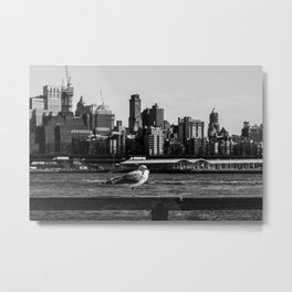 A seagull stand on fence with background of Brooklyn Heights from east river side Metal Print