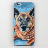 hercules iPhone & iPod Skins featuring Hercules by Lindsay Larremore Craige