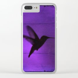 Razzleberry Hummingbird by CheyAnne Sexton Clear iPhone Case