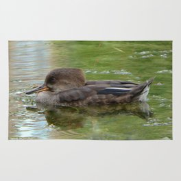 Hooded Merganser Rug