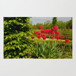 elm and red tulips arranged Rug