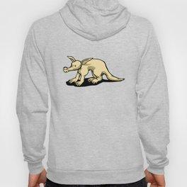 Aardvark Hoody