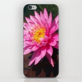 Zenful Pink Water Lily iPhone Skin