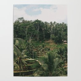 Bali Tegalalang Poster