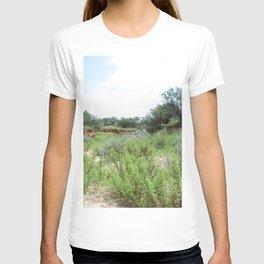 Clovis Site, No. 2 T-shirt