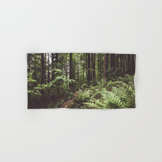 Woodland - Landscape and Nature Photography by ewkaphoto