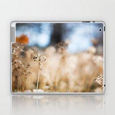 Fairy Land Laptop & iPad Skin