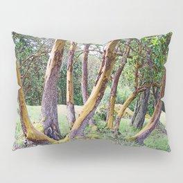 MAGIC MADRONA FOREST Pillow Sham