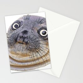 Seal Face Funny Pinnipeds Afraid Mistake Caught Act Stationery Cards