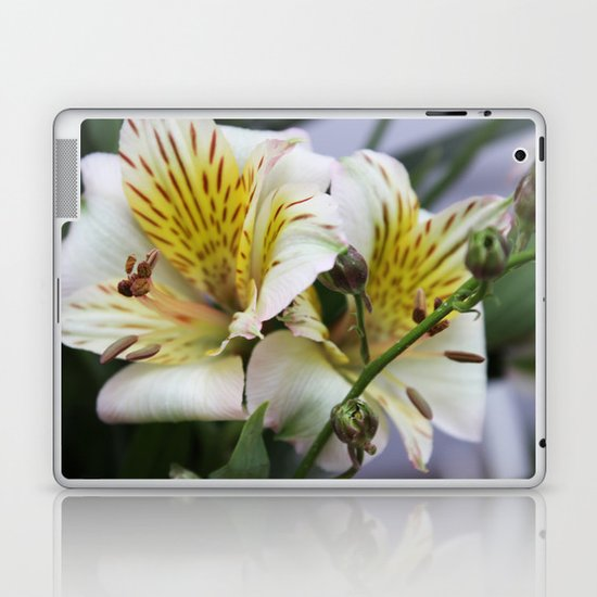 Freesia Laptop & iPad Skin