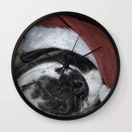 Sleeping Christmas Saint Bernard dog Wall Clock