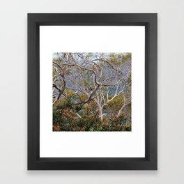 Only Natural II Framed Art Print
