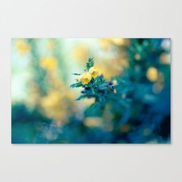 Amber Lights Canvas Print