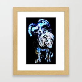 Blue Schnauzer Framed Art Print