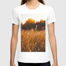 Golden Fields T-shirt
