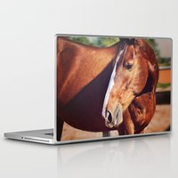 frank Laptop & iPad Skins featuring Frank by Images by Nicole Simmons