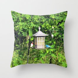 Red-Breasted Grosbeak & Indigo Bunting at Feeder Throw Pillow