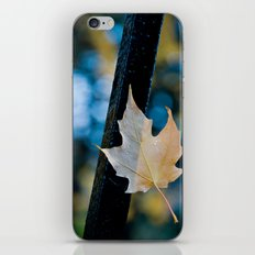 'PERSEVERENCE' iPhone & iPod Skin