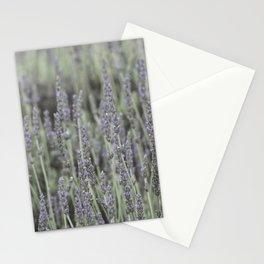French Lavander Fields Stationery Cards