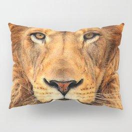 Wild Cat Glare Pillow Sham