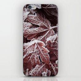 Frost 2 iPhone Skin