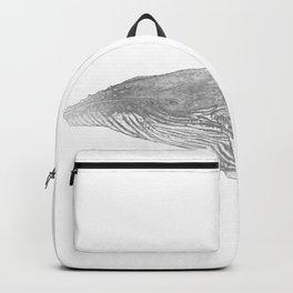 Grey Humpback whale portrait Backpack
