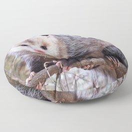 Possum Staredown Floor Pillow