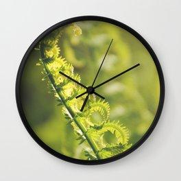 AFE Fern Wall Clock