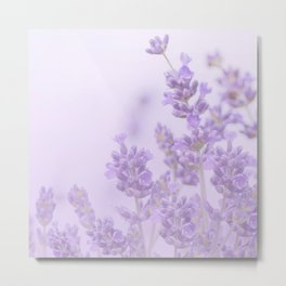 Lovely Lavenders Pastel Purple Background #decor #society6 #buyart Metal Print