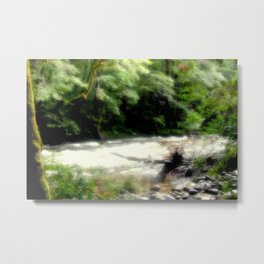 Franklin - Gordon River Metal Print