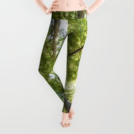 The Redwood National and State Parks Leggings