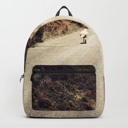Sheep On A Gravel Road Backpack
