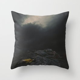 In the Shallow of the Night Throw Pillow