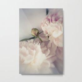 Pink peonies 33 Metal Print