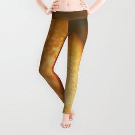 Orange peel, macro photography, fine art print, texture, for bar, home decor or interior desig Leggings