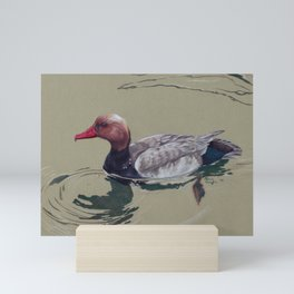 Red Crested Pochard (Netta Rufina) Colored Pencils Artwork Mini Art Print