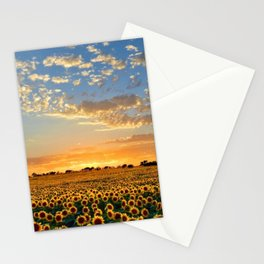 Sunflowers and Sunflower Fields at Sunset - Jeanpaul Ferro Stationery Cards