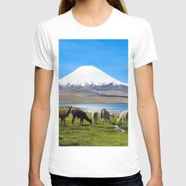 Chungara Lake, Chile T-shirt