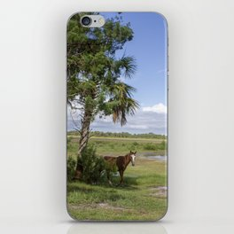 Wild Horse roams free on Cumberland Island, GA iPhone Skin
