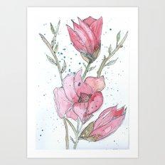 Magnolia #3 Art Print