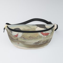 John Gould - A Monograph of the Pittidae (1880) - Pitta maxima / Ivory-breasted pitta Fanny Pack