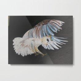 Owl in flight flying owls bird birds nocturnal nature birdlife wild and free zoo Metal Print