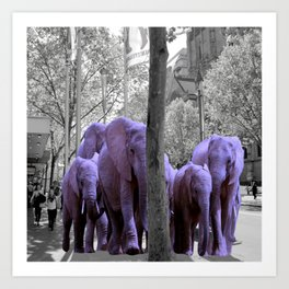 Purple guests Art Print