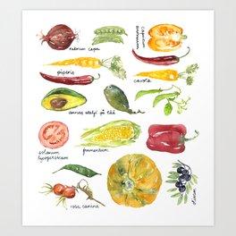 Anna's vegetable market Art Print