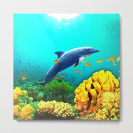Dolphin in Water Metal Print