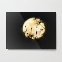 Perigee Moon Metal Print