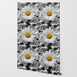 Cheerful Daisy Flower A197 Wallpaper