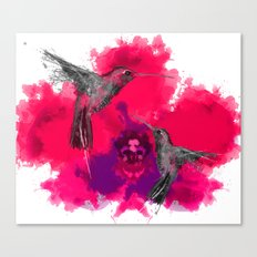 Pink hum orchid explosion  Canvas Print