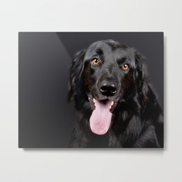 Happy Black Labrador Retriever Metal Print