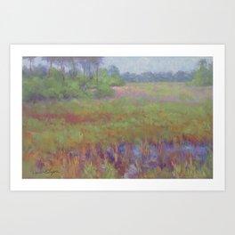 Spring Marsh Art Print